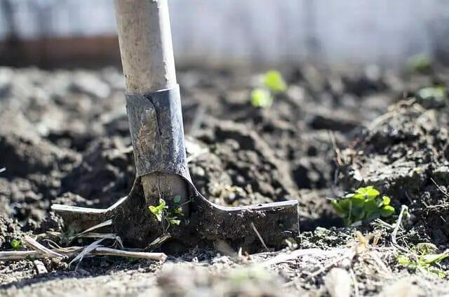 Shovels Gardening Tool