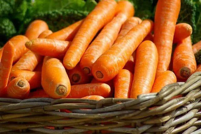 Danver carrot types