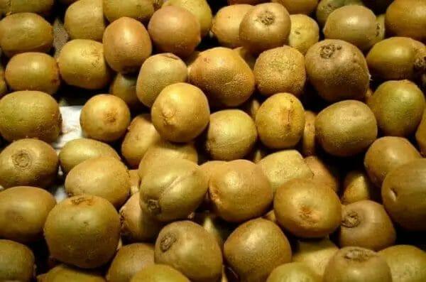 kiwifruits farming