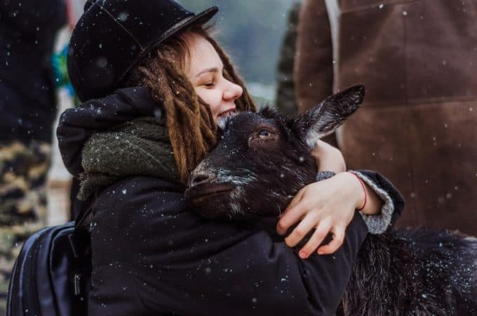 keeping goats warm in cold weather