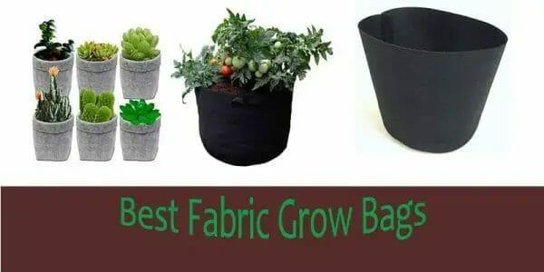 Best Fabric Grow Pots 2020