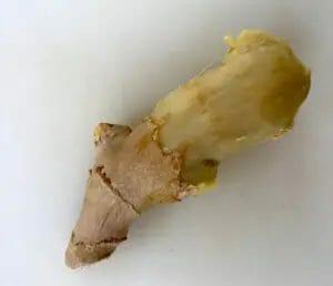 Rotten Ginger
