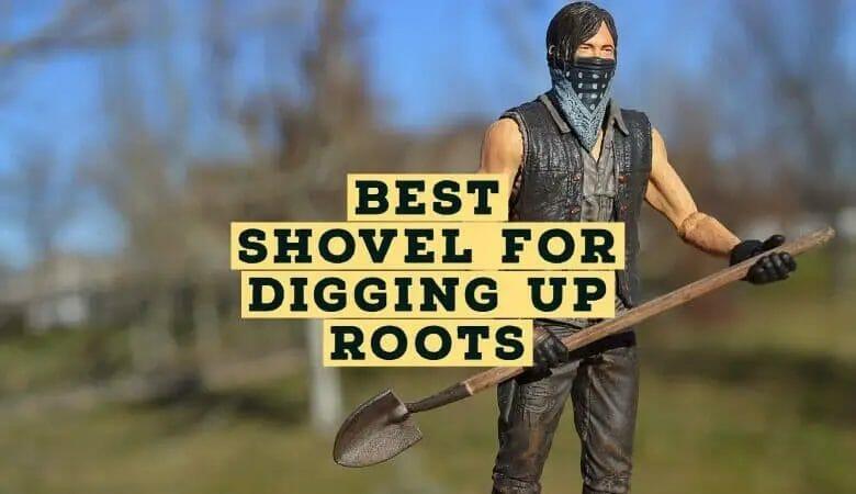 Best Shovel for Digging Up Roots