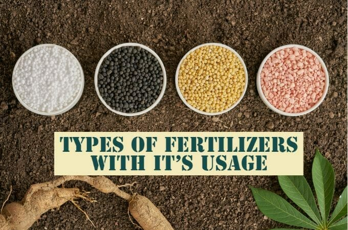 List of Different Types of Fertilizers