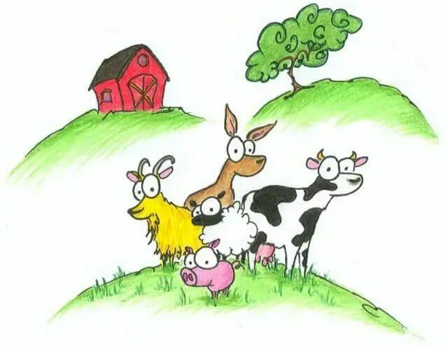 Small Farm Animals
