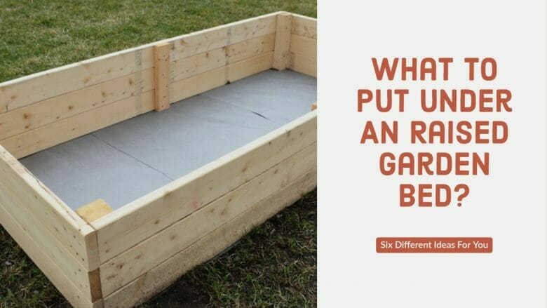 What To Put Under A Raided Garden Bed